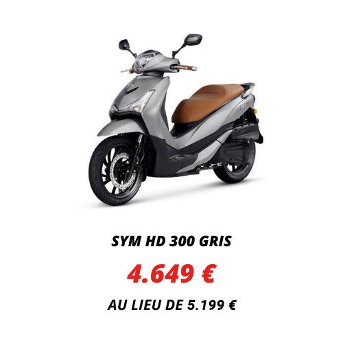 Sym HD 300 Gris